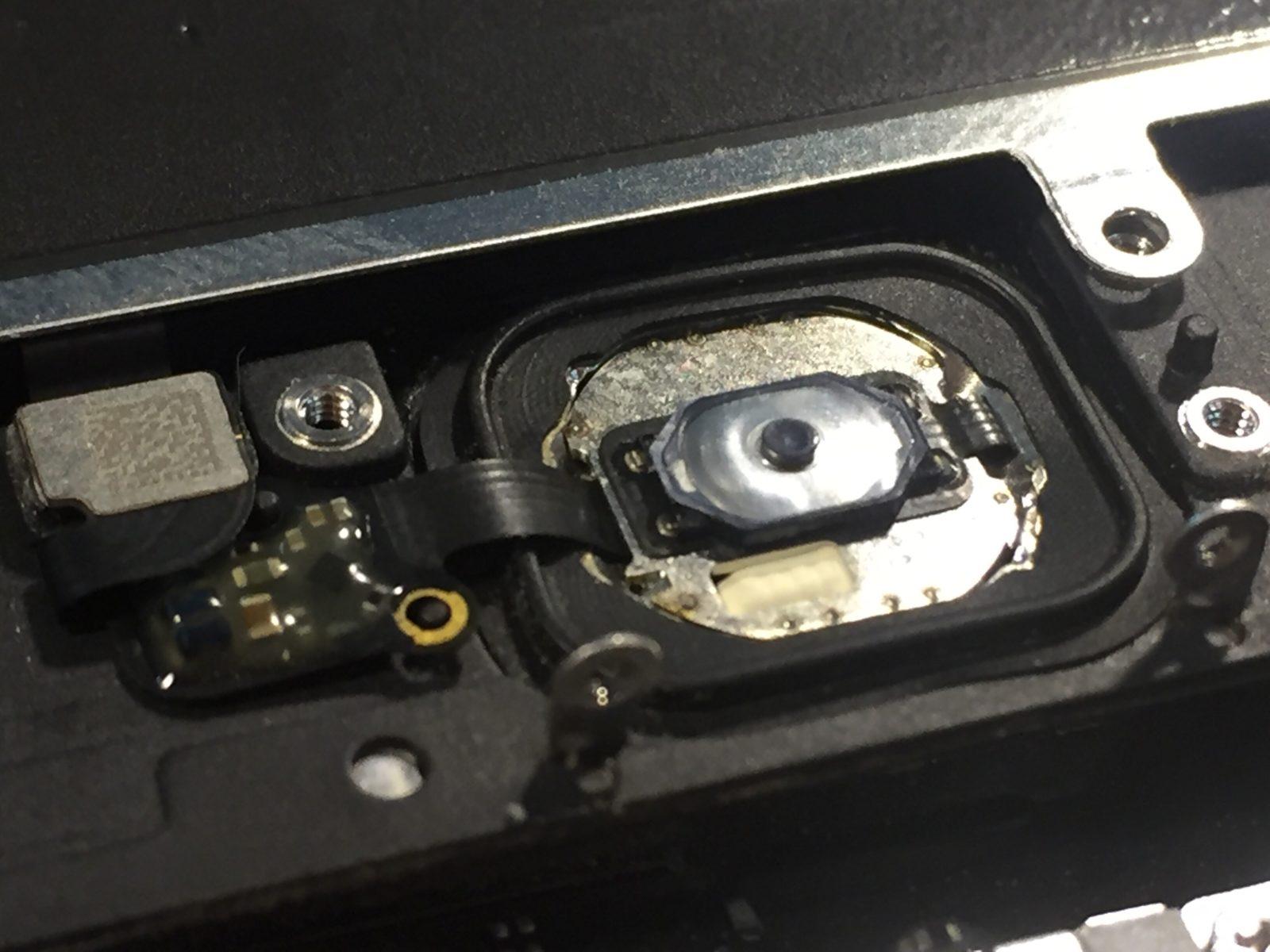Не работает кнопка Home на iPhone 6, 6s (plus) - прощайтесь с Touch ID